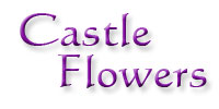 The Wedding Planner Castle Flowers